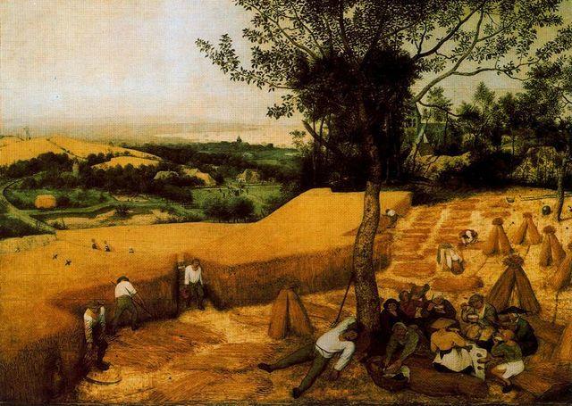 La cosecha del trigo