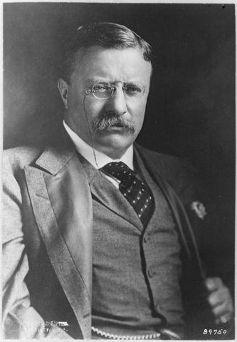 Теодор Рузвельт, 26-й президент США