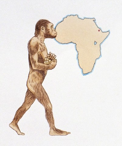 Lucy fossil is discovered