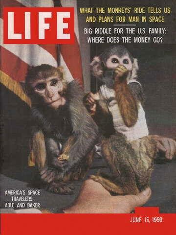 U.S Launches Primates