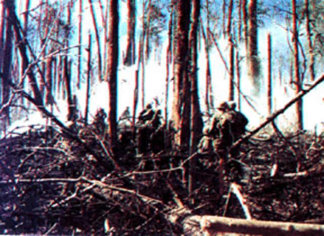 Bloody Battle Near Dak To