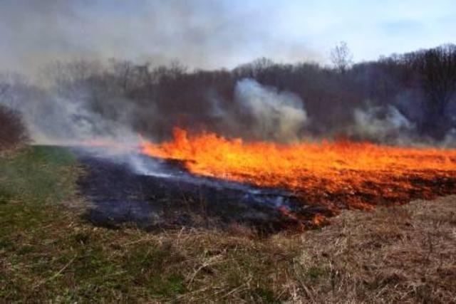 Muck Fire