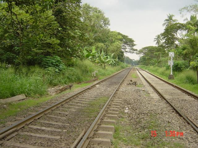 railroads expand