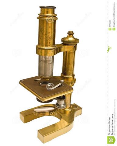 Primers microscopis
