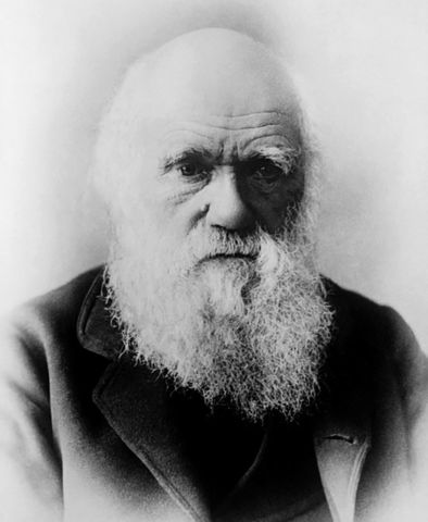 Curiosidades sobre Charles Darwin I