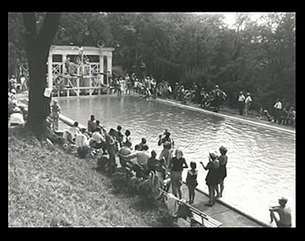 Inicios de la natacion