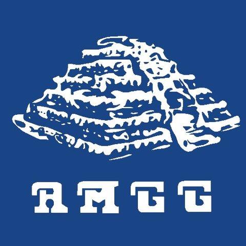AMGG es aceptada en la Asamblea de Viena IAG.