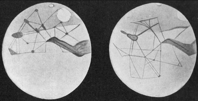 Percival Lowell's Martian Canal drawings