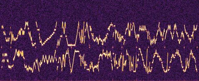 Receive Abnormal Signal from the Space