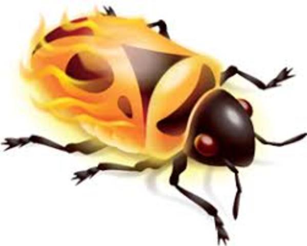 Firebug 0.2 lanzado