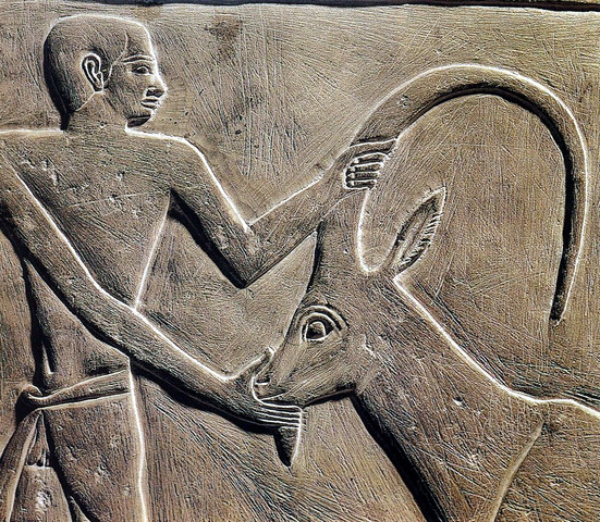 Древний Египет: Древнее царство