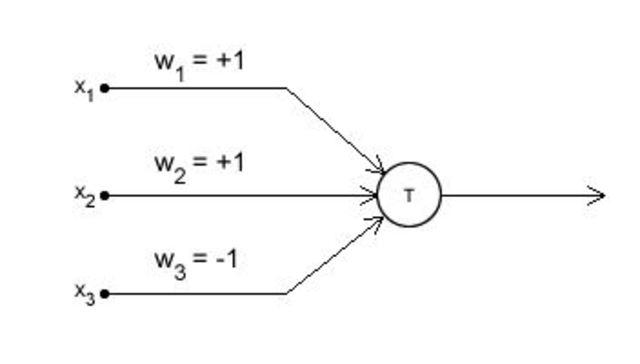 Primera Neurona Elemental