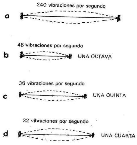 Pitágoras: La ley pitagórica de las cuerdas.