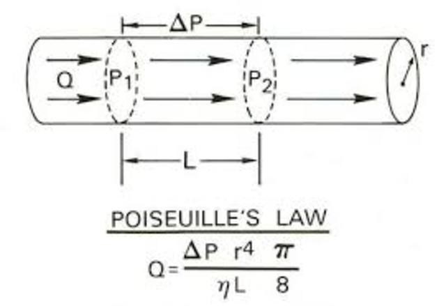 Poiseuille (1799-1869)
