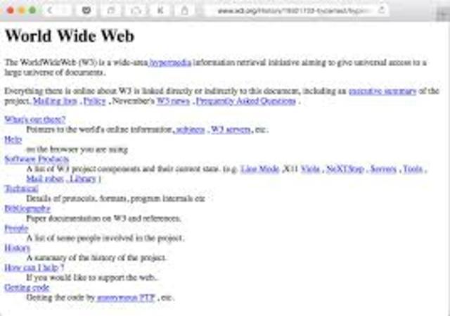 1990  Pagina Web