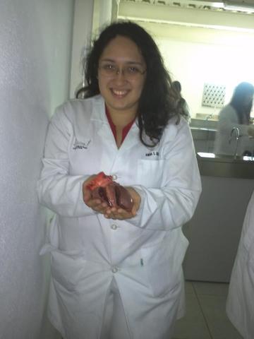 Ingreso facultad de medicina