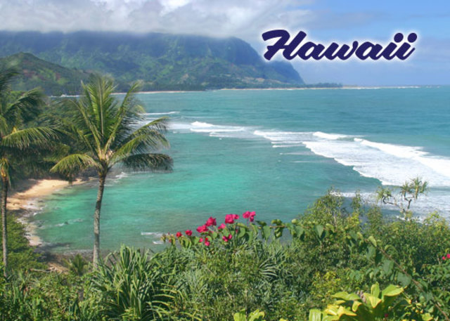 Fuí a Hawaii