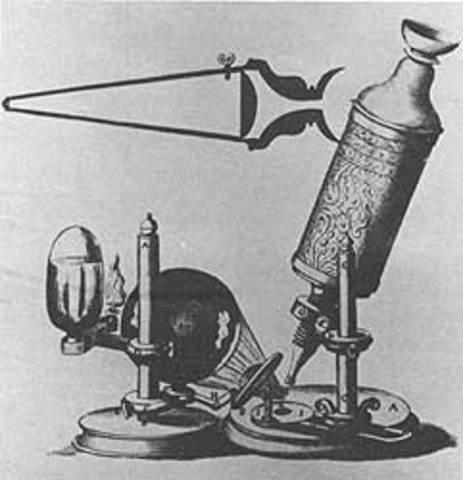 Primera observacion de las células biológicas (1665)