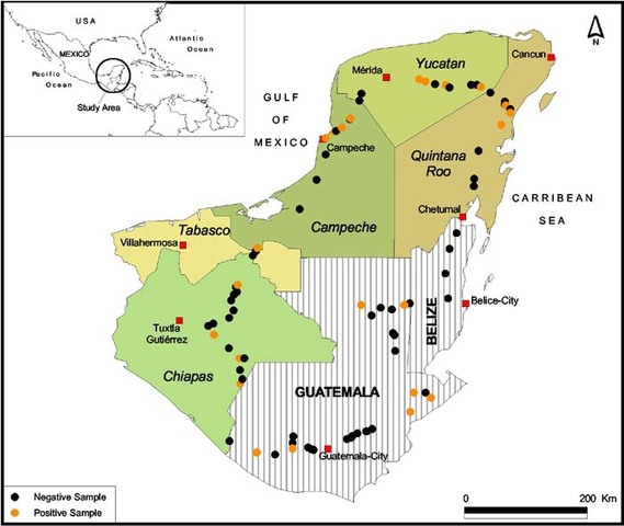 Autonomía de Guatemala