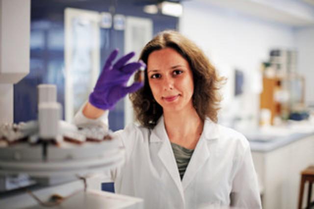 2017 - Investigadora, Instituto Superior Técnico de Lisboa