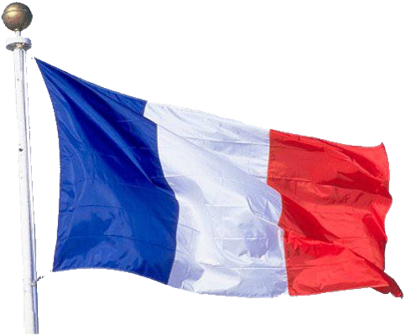 France Restored the Monarchy