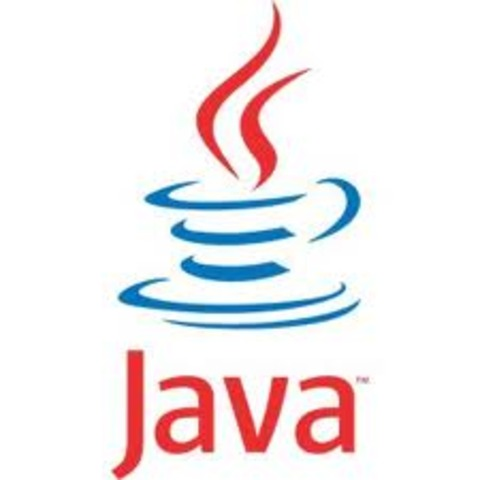 Lançada pela Sun Microsystems a linguagem Java