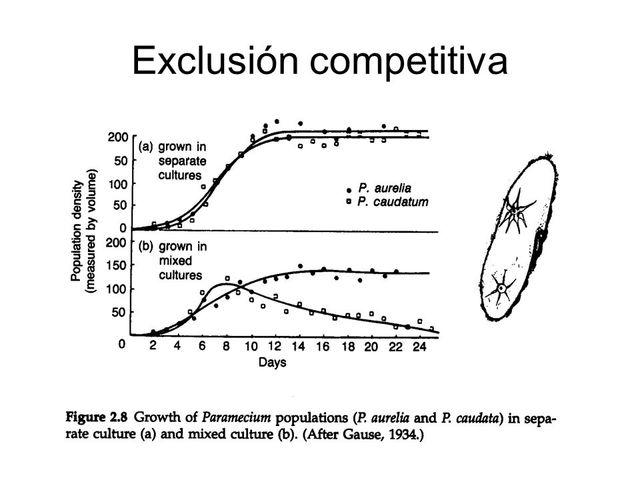 Georgi Frantsevich Gause publicó lo que se conoce como el principio de exclusión competitiva.