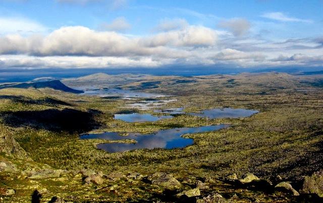 Eugien Warming  realiza expedición a Noruega, Finnmark