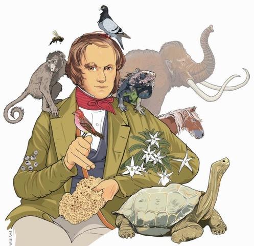"""Alfred Russel Wallace publica su obra """"Contribuciones a la teoría de la selección natural"""""""
