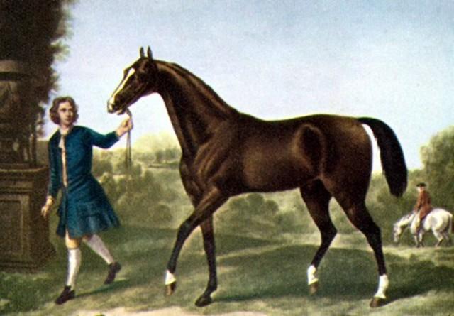 2.000 A.C: Mesopotámicos domesticaron caballos para transporte