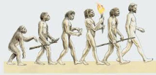 *EVOLUCIÓN DE LA ESPECIE HUMANA