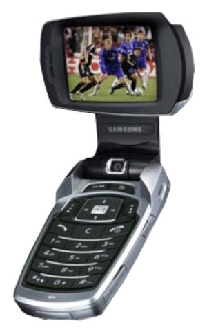 Samsung SGH-V500