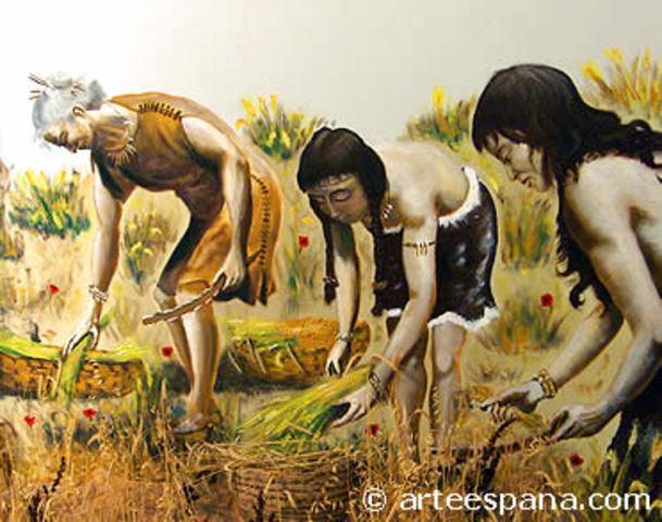 Neolítico - Agricultura