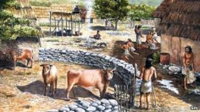 Neolítico - Ganadería