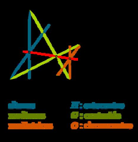 Publicó la obra Introductio in analysim infinitorum.