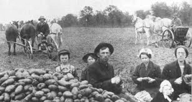 1920's Economy- Farm Economy