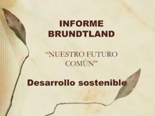 Comisión Brundtland.