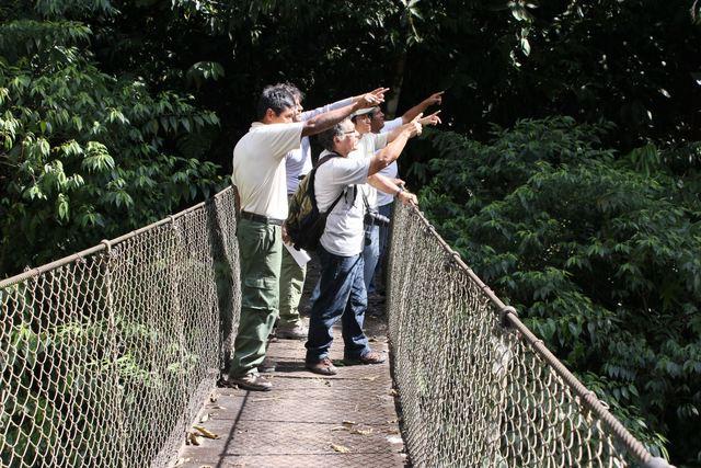 Ceballos Lascuarain tiene una definicion mas adoptada de ecoturismo