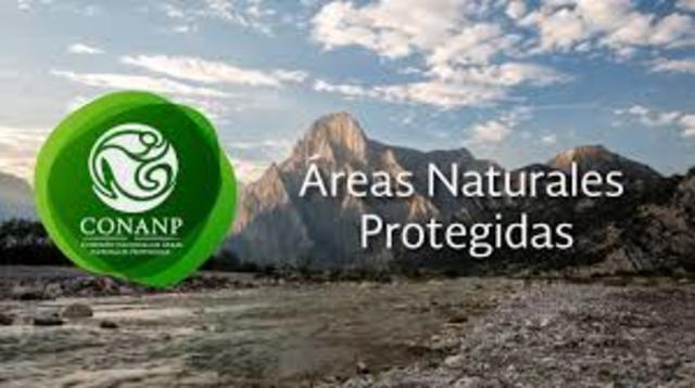Pedersen señala que el ecoturismo considera la protección de áreas naturales