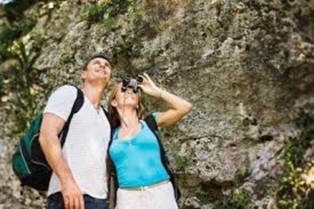 Barkin y Pailles señalaron que el ecoturismo comenzó de manera formal a desarrollarse en la década de los años noventa