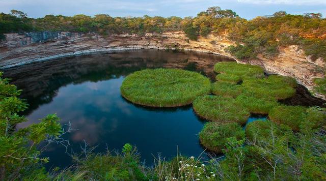 La reserva de la biosfera conocida como el cielo fue establecida por el gobierno estatal y la secretaria federal del desarrollo urbano.