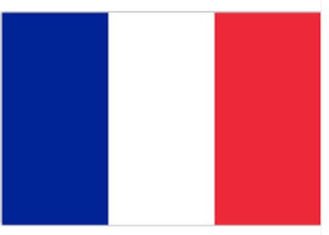 Origem do francês