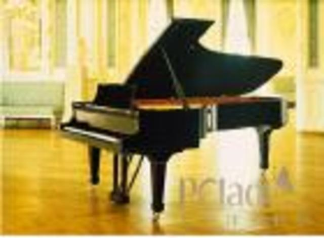I started to learn piano
