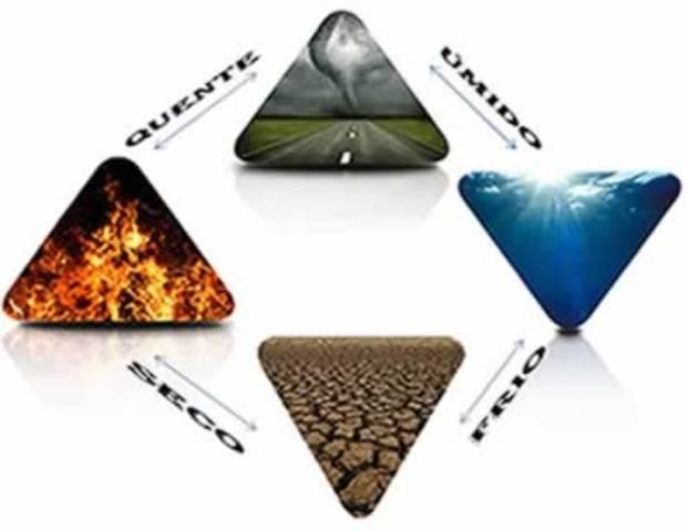 Teoria dos Elementos