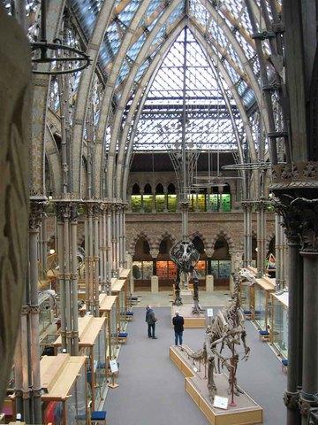 Museo de la Historia Natural de Oxford