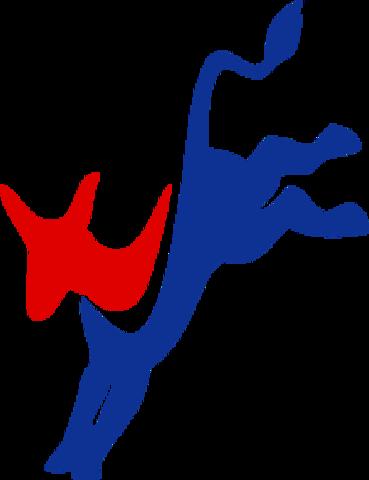 Democratic Split