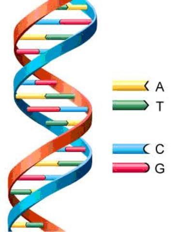 Friedrich Miescher descubre el ADN