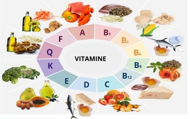 Frederick Gowland Hopkins describe las vitaminas y propone su carencia como causa de algunas enfermedades