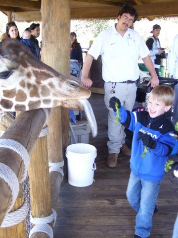 A trip to the Jacksonville Zoo