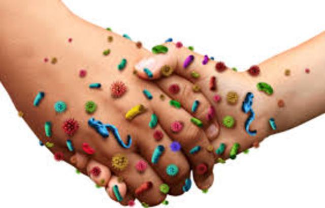 Descubrimiento de los gérmenes y bacterias